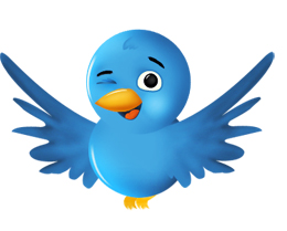 Twitter Bitches